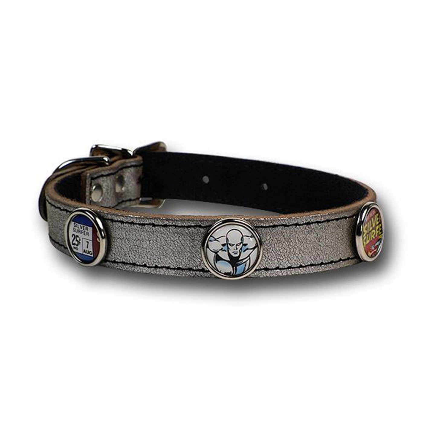 Silver Surfer Dog Collar/Leash Combo
