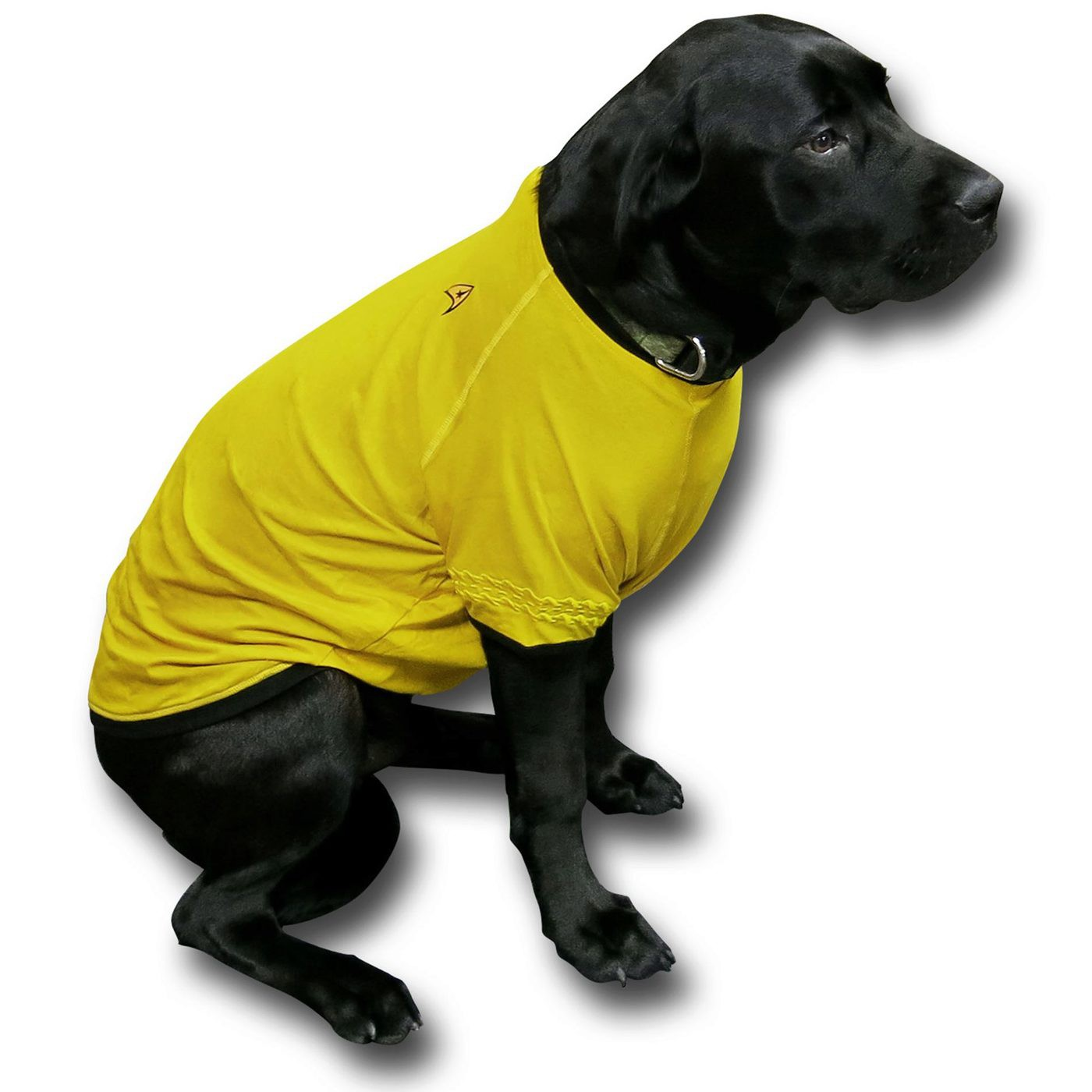Star Trek Command Uniform Dog Shirt