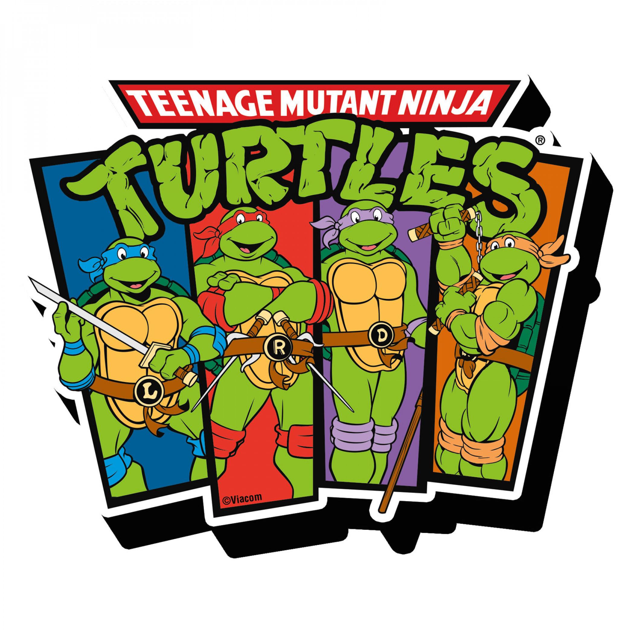 Teenage Mutant Ninja Turtles TMNT Characters Magnet