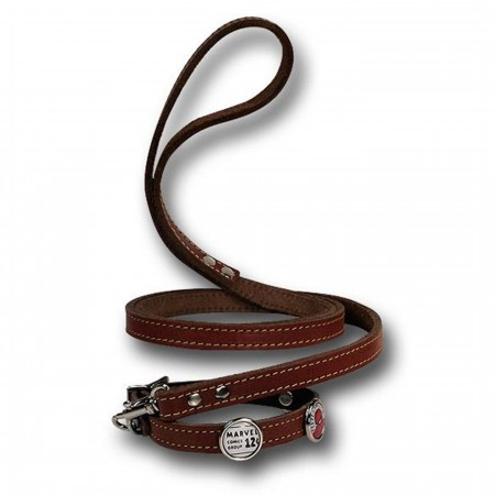 Spider-Man Dog Collar/Leash Combo