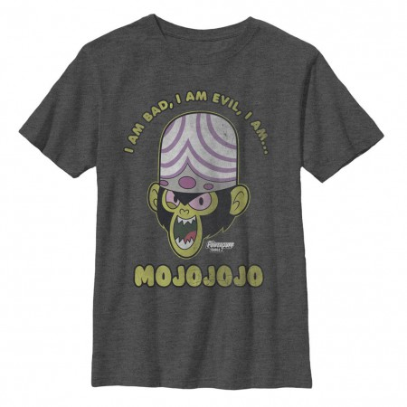 Power Puff Girls Evil Mojojojo Monkey Gray Youth T-Shirt
